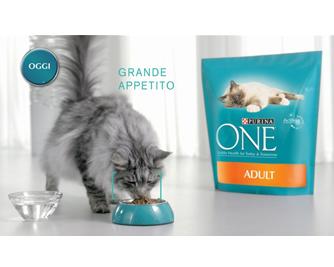 Media Key Il Nuovo Spot Purina One Racconta Con Lo Splendido Maine Coon Il Segreto Del Benessere Dei Gatti In Salute